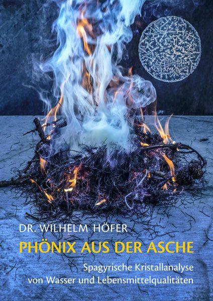 PhoenixAusDerAscheBuch.jpg